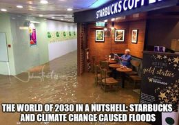 Climate change memes