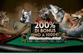 PaddyPower Bonus Poker